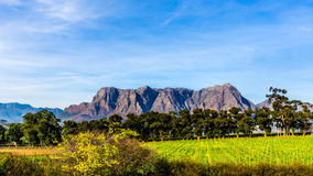 Hottentot-Holland-Berge umgeben durch Weinberge und Ackerland in der Weinregion von Stellenbosch Stockbild