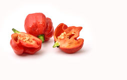 Hottest pepper. In the world, Trinidad scorpion `Butch T` pepper Royalty Free Stock Photo