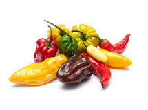 Hottest peppers Stock Photos