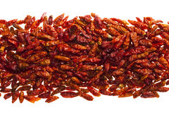 Hottest red bird eye chillies peper Royalty Free Stock Images