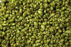 Houblon en cônes frais vert pour faire la bière et le pain haut étroit Images stock
