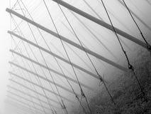 Houblon-pôle Photos libres de droits