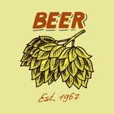 Houblon verts pour la bière de brassage Emblème ou logo de calibre pour l'enseigne Affiche pour le site Web ou le livre Grav? tir illustration stock