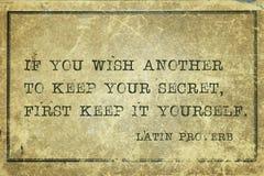 Houd geheim LP stock afbeeldingen