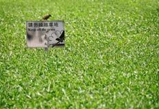 Houd het Gras op een afstand stock afbeelding