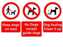 Houd honden op loodteken Stock Foto's