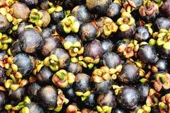 Houd in vorm met voedingsmiddelen van gezonde vruchten stock fotografie