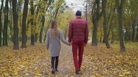 Houdend van paar die een wandeling in de herfstaard nemen stock footage