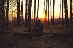 Houdend van paar in het avond bos stock foto's