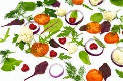Houdende van groenten Controleer de gezondheid Royalty-vrije Stock Afbeelding