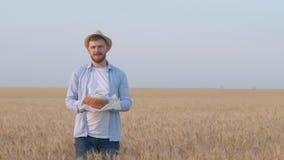 Houdt de perspectief jonge agronoom, gelukkige kerel brood in zijn hand, ruikt het en toont met handuitgestrektheid van korreltar stock video