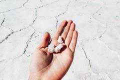 Houdt de Uyuni Zoute Vlakte - Salar de Uyuni - turist zoute steen stock afbeelding