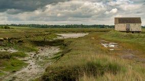Marshland near the River Crouch, England, UK. Houese on stilts in the marshland near the River Crouch, Wallasea Island, Essex, England, UK Royalty Free Stock Images