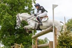 Houghton cavalo experimentações maio de 2017 internacional imagens de stock royalty free