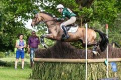 Houghton internationella hästförsök Aoife Clark som rider Colorfast Royaltyfri Foto