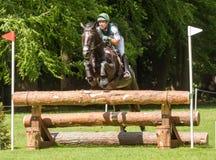 Houghton internationella hästförsök Austin Oconner som rider Billy Royaltyfri Fotografi