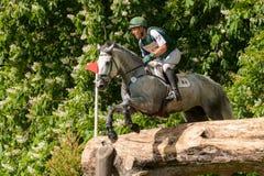 Houghton internationella hästförsök Austin OConner som rider Colora Fotografering för Bildbyråer