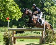 Houghton internationella hästförsök Greg Kinsella som rider Watermi Fotografering för Bildbyråer