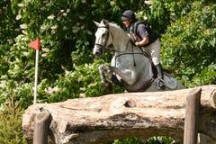 Houghton internationella hästförsök Maj 2017 Royaltyfri Foto