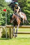 Houghton internationella hästförsök Maj 2017 Fotografering för Bildbyråer