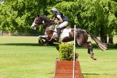 Houghton internationella hästförsök Martha Craggs som rider Corbett Royaltyfri Bild