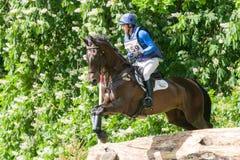 Houghton internationella hästförsök Tim Cheffings Royaltyfria Foton