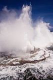 Houma Blowholes 02 royalty free stock photos