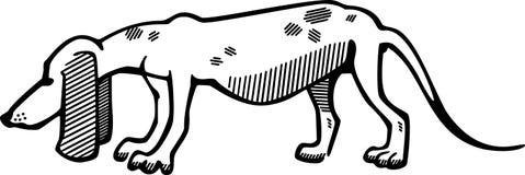 Hound Dog Royalty Free Stock Photos