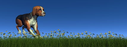 Hound dog running - 3D render Royalty Free Stock Photo