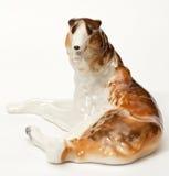 Hound hound Stock Photography