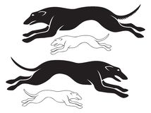 hounds Image stock