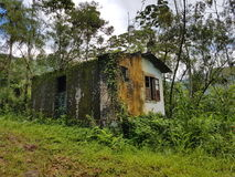 Hounted house. Abandoned house in the nature stock photography