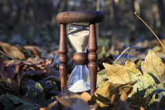 Hourglass in autumn forest Stock Photo