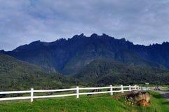 Hourse и majectic гора Стоковая Фотография
