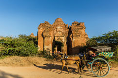 Hourse carriages with Dhammayangyi temple The biggest Temple. Stock Photography