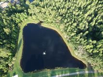 House湖和树 库存照片