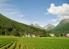Dream House in Norway. Dream House among mountains and fields Stock Photo
