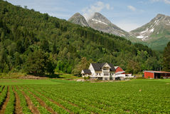 House in Norway. House among mountains and fields Royalty Free Stock Photography
