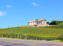 Country big House. Big house in the middle of the vineyards in a calm place in the nature Stock Images