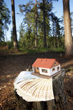 House. On euros in forest Stock Photography