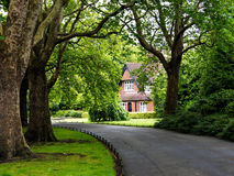 House. The house in the park in Ireland Royalty Free Stock Image