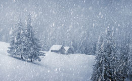 House. Wooden house in winter forest Stock Image