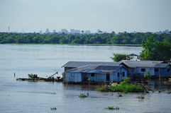 House on the Amazon river Royalty Free Stock Image