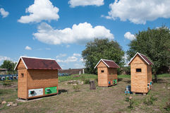 House for apitherapy. Wooden single-seat house for apiotherapy outdoor at summer sunny day Stock Photography