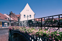 House of Arts. Image showing the House of Arts and the Liar's Bridge in Sibiu, Romania royalty free stock photography