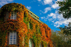 House in Autumn Stock Photo
