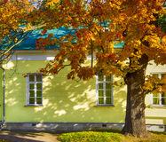 House in autumn. The house and tree in autumn Stock Images