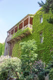 House with a balcony overgrown with grapes royalty free stock image