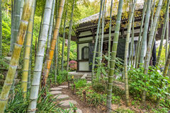 House in bamboo forest Royalty Free Stock Photography