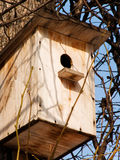 The house for birds Royalty Free Stock Photography